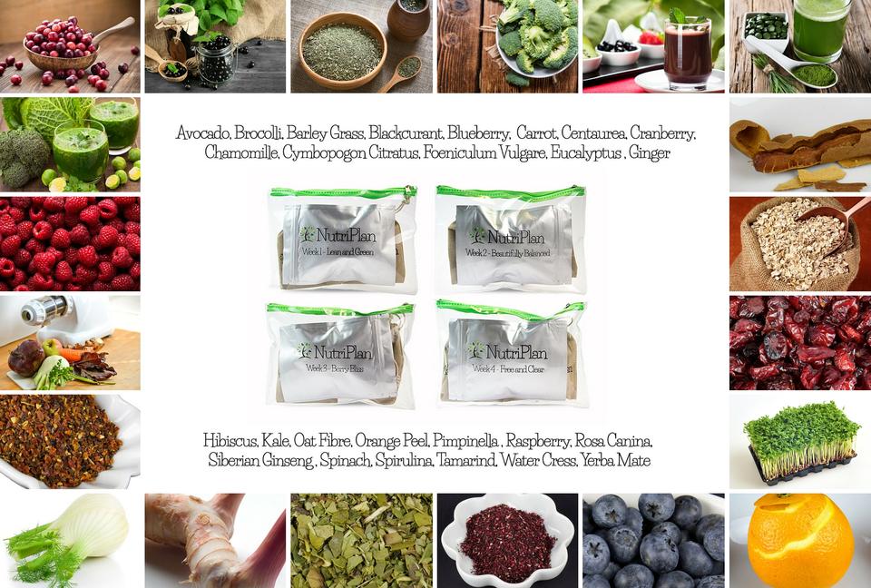 nutriplan Ingredients